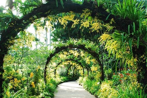 Singapore Botanic Gardens in Singapore